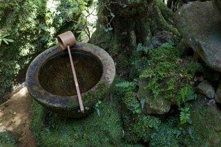 wabi-sabi tea ceremony
