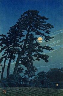 moonviewing, sweet slumber