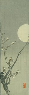 plum blossoms with moon