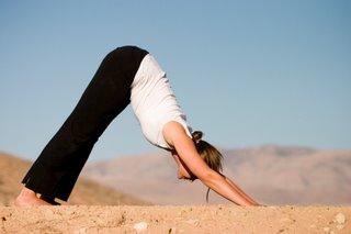 yoga downward facing dog pose
