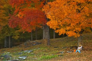 autumn, a time for wellness